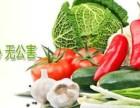 成都蔬菜配送创业好吗 蔬菜配送怎么做