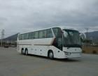 潮州7~55座豪华旅游接送用车服务商