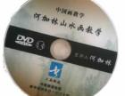 书画频道何加林山水绘画教学光盘精装版56讲19DVD