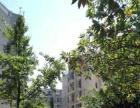 急急租房源出租 碧海商业广场附近3房精装 拎包入住 全新家电