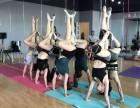 华翎舞蹈一成人零基础舞蹈培训一舞蹈老师培训
