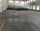 新埭 厂房 8000平米