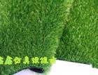 北京假草坪批发假草坪厂家