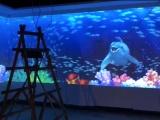 餐厅宴会大厅墙面投影动态壁纸艺术墙纸5D墙体