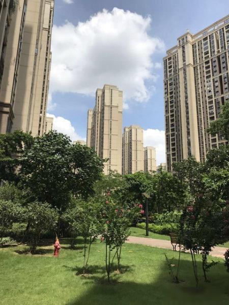 中海锦城国际花园 靠近广州 交通便利 家私家电齐全 采光好