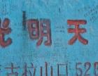 拉萨到机场、林芝,羊湖,纳木错,珠峰常年包车