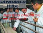 甘道夫动物B超厂家全国诚招代理经销商