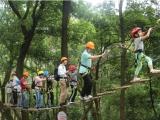 广州周末亲子游,天鹿湖飞越丛林,不一样的体验