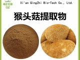 猴头菇提取物 猴头菇速溶粉生产厂家