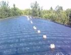 屋顶.卫生间、免砸敲砖快速补漏,补好看到效果再收费