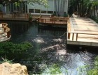 广州白云大道专业清理鱼池水池公司,观赏鱼池清理,专业清洗水池