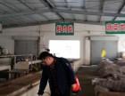 淮安周边专业灭鼠,治虫,防治白蚁公司