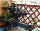 珠海园林假山设计施工,风水园林假山水池设计施工