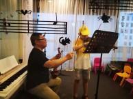 南山乐器培训古筝钢琴二胡吉他小提琴琵琶培训