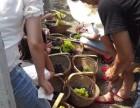 上海滴水湖附近农家乐 采五彩番茄葡萄 自助烧烤 垂钓划船