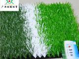 哪里能买到实惠的广西人造草坪-桂林人造草坪批发厂家