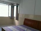 安新洲安新小区南区 1室1厅53平米 简单装修 押二付一