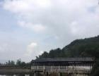 杭州周边小型会议、真人CS、餐饮、拓展培训组织