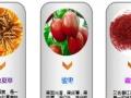天津汇港农产品交易市场加盟,免费办理个人开户