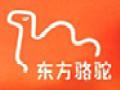 东方骆驼潮流休闲服饰加盟