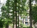 幸福筑家红山机电花园顶跃复式楼70万精装双学区带超大露台车位