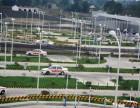 上海招生快速增驾A1A2B1B2 C1推荐就业