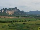 外資求購全上海物流用地100畝以上
