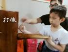 武术江西臻传咏春拳国术