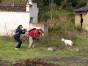 苏州尹山湖附近摄影培训学校,轻松从0学摄影