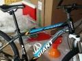 捷安特组装山地自行车低价出售