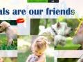 出国留学英语辅导班 美国老师在线视频辅导