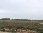 吴川吴阳金海岸25亩地证件齐全出售 靠近大海边
