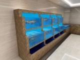 中山全地区海鲜池定做 专业中山海鲜设计公司