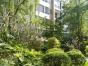 小房子大风景,保利罗兰香谷2居室仅租1700