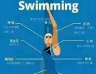 暑期游泳培训班预售活动