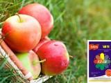 北京蘋果膨大著色期追施肥這樣用更高產