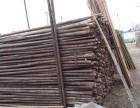 北京竹子哪里有卖竹竿供应