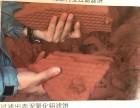 建筑工地樁基打樁排放泥漿脫水固化處理設備租售