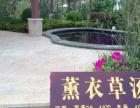 东莞出发去阳江 空中 温泉、闸坡休闲豪华二天游
