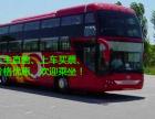 客车)从上海到永城的直达汽车(班次信息表?)+客车票价多少钱