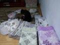 处理一批二等品布艺沙发垫!一套50包邮!就100来