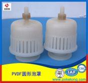 萍乡科隆为浙江客户定制DN110mm PVDF圆形泡罩