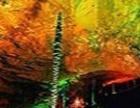 张家界国家森林公园、溶洞奇观黄龙洞三日游