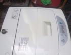 出售小天鹅全自动洗衣机