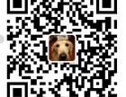 上海融资租赁公司收购