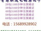 联通敞开打+1160分钟+450兆流量 29元