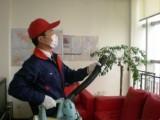 佛山三水室内清洁,清洗地毯 化粪池清理 污水池清理,价格合理