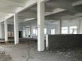 沙市318国道小胡鸭厂隔壁7000平大厂房出租