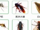 全郑州《24小时》上门灭老鼠、灭蟑螂服务高端客户