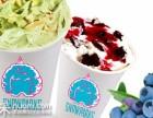 冰雪公园冰淇淋引领加盟商打开新市场,冰雪公园冰淇淋值得加盟